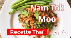 Recette thaïlandaise du Nam Tok Moo