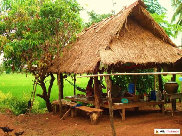 Paillote Thaï servant au repas et à s'abriter du soleil
