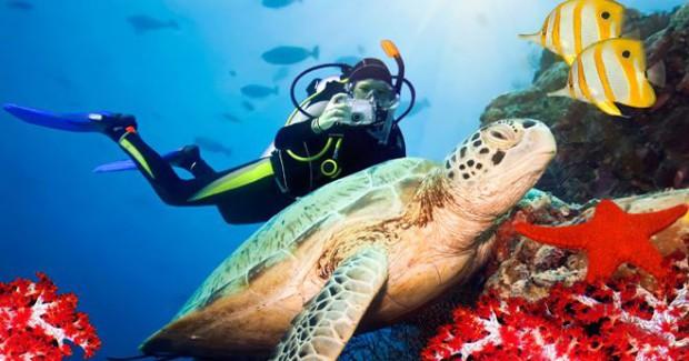 Plongée sous-marine à Koh Chang